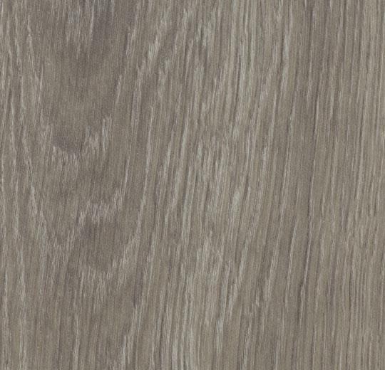 w60280-grey-giant-oak