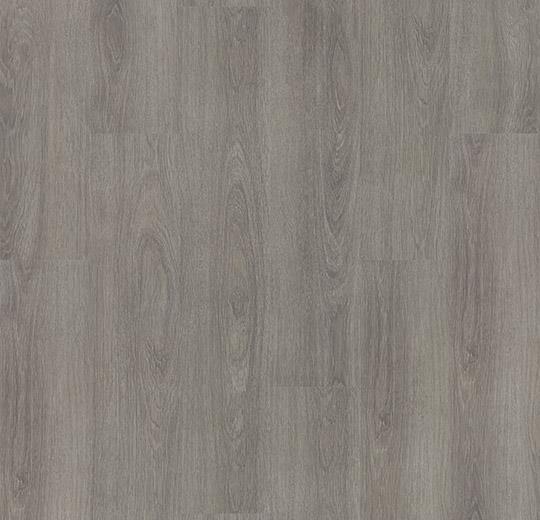 w60280-grey-giant-oak1