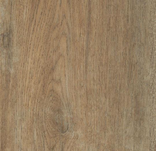 w60354-classic-autumn-oak1