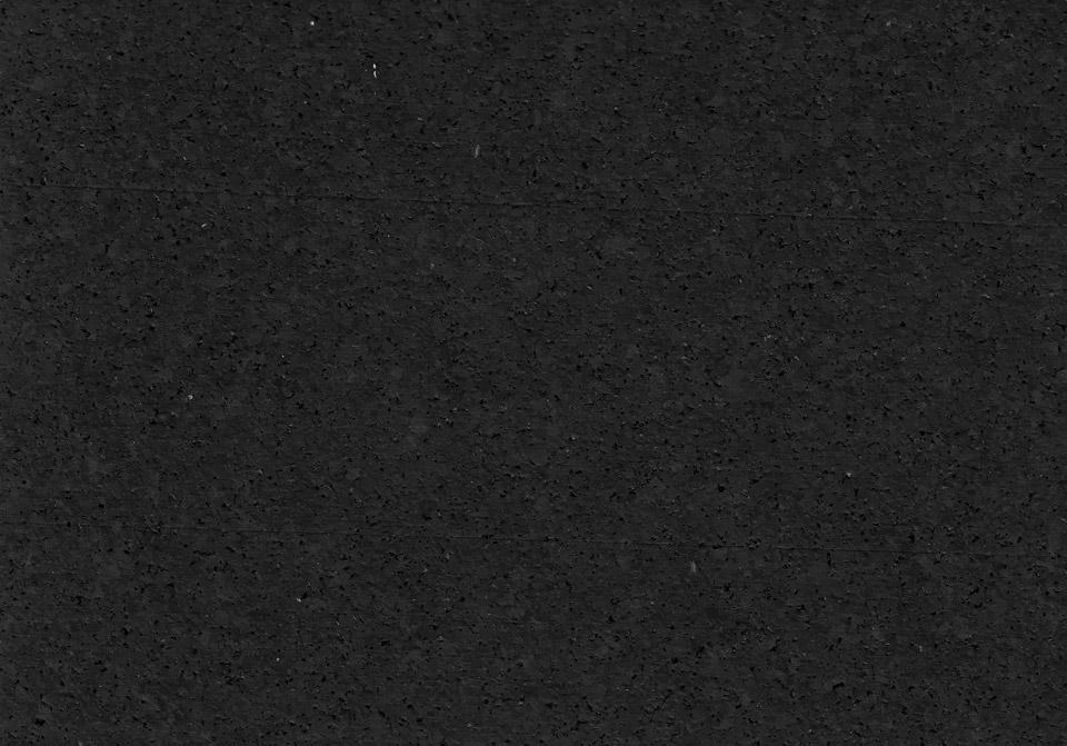 SPORTEC_color-0_neu-1