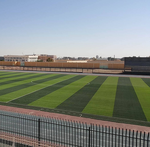 Спортивная трава – Хатко – Spine Turf