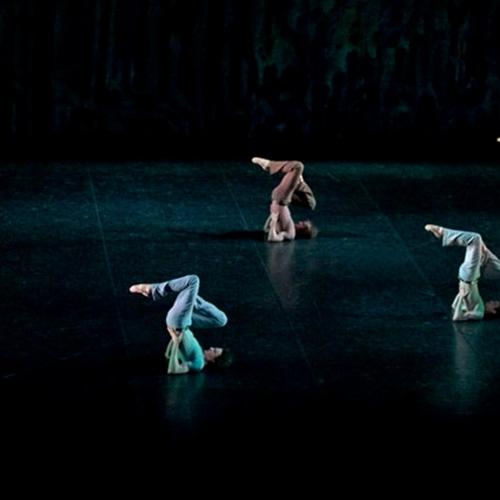 Специальные покрытия (Сценический ПВХ) – Harlequin Allegro
